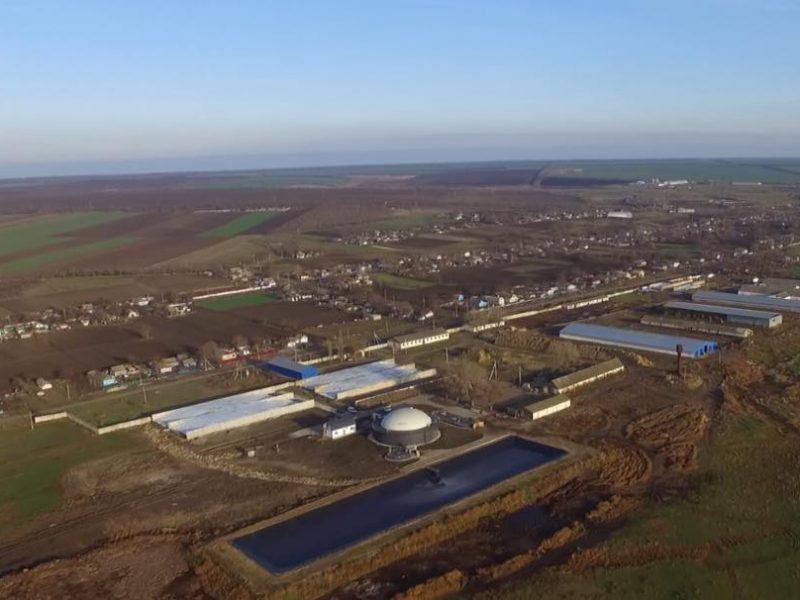 Коровий навоз – как источник электричества: на Николаевщине заработал биогазовый завод