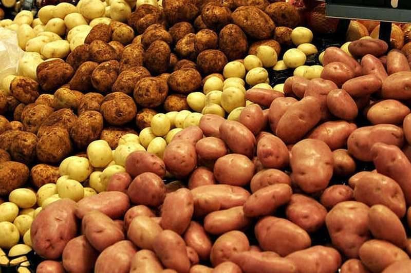 Украина начала импортировать картошку из России