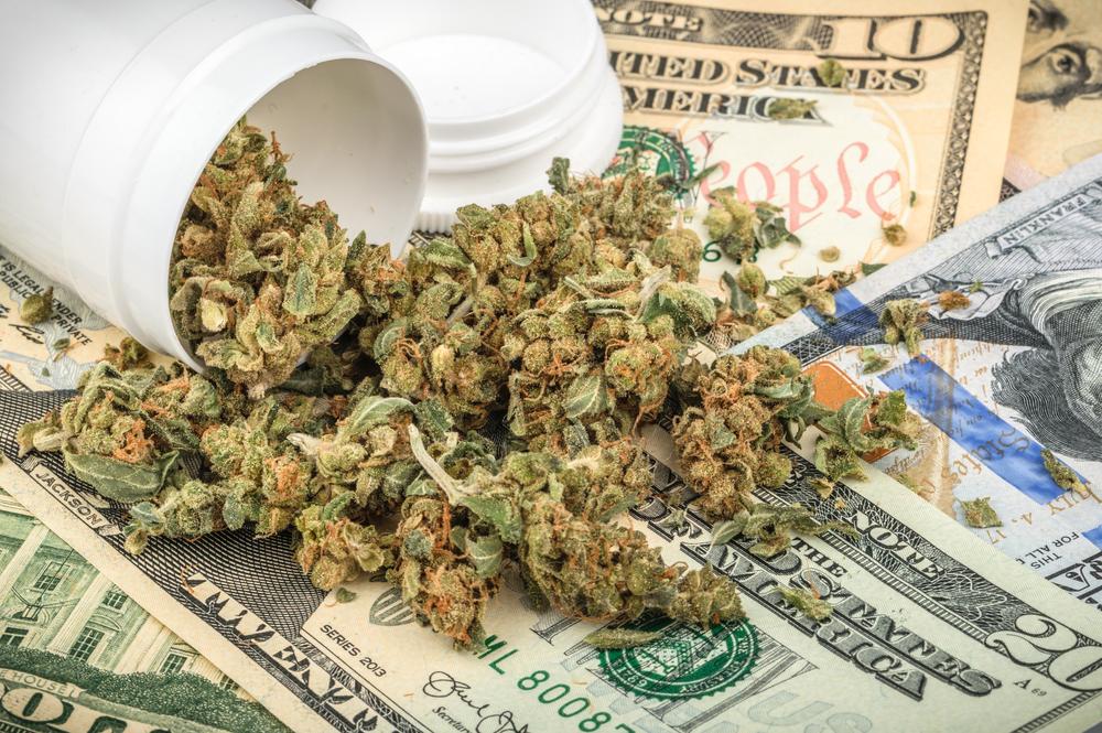 Когда разрешили марихуану как вырасти коноплю в квартире