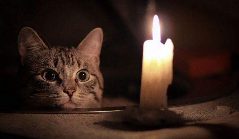 "В Николаеве снова масштабное аварийное отключение света. Кому ""повезло"""