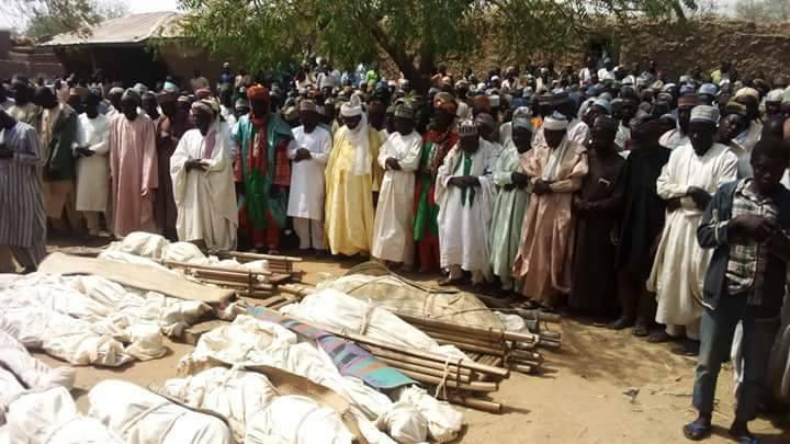 Из-за овец в Нигерии погибли сразу 36 мужчин – они перестреляли друг друга