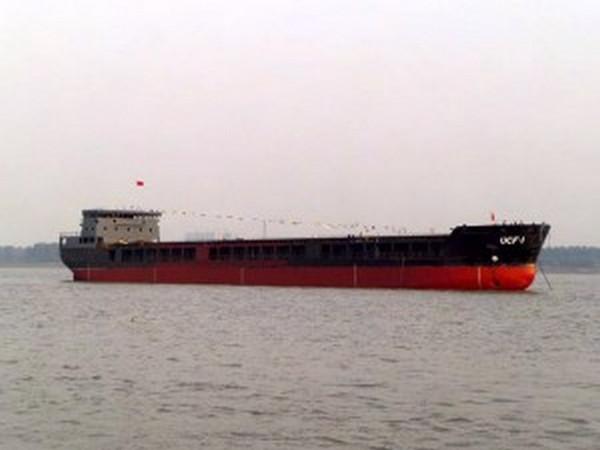 Украинское Дунайское пароходство переводит флот под флаг Словакии