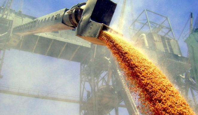 Рада снизила ставку НДС для сырьевой агропродукции – с 20 до 14%