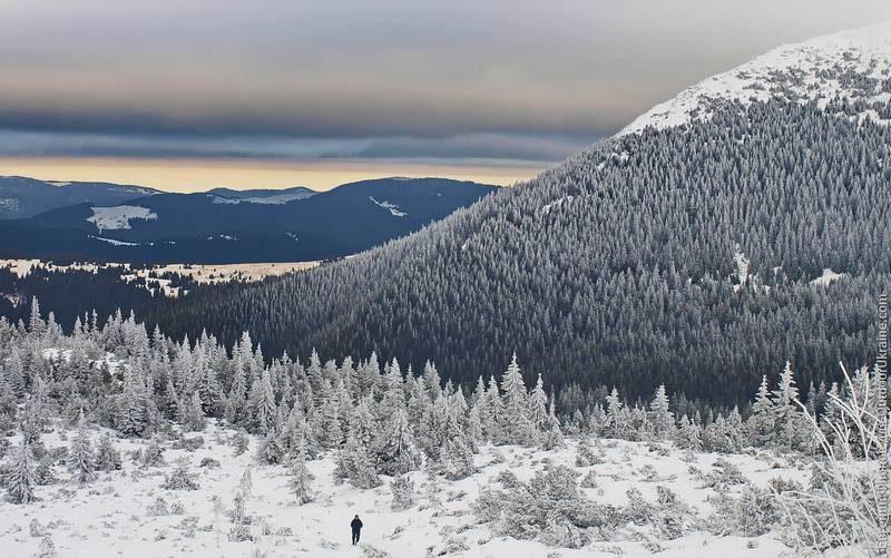 Спасатели нашли в Карпатах заблудившегося лыжника из Германии