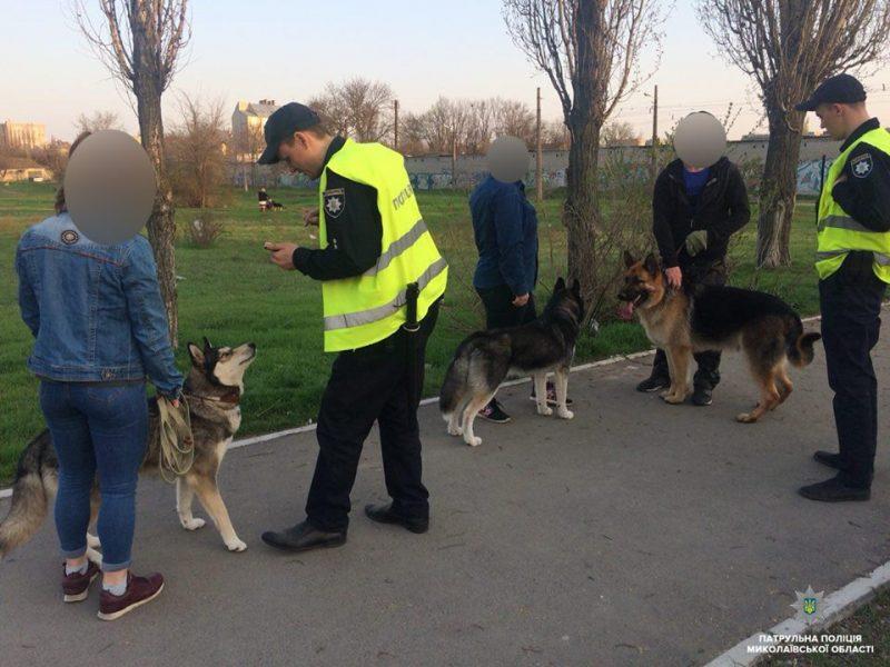 В Николаеве патрульные полицейские начали составлять протоколы на горожан за выгул собак без намордников