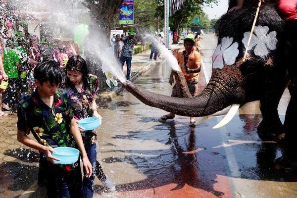 В Таиланде отметили знаменитый предновогодний Фестиваль воды со слонами