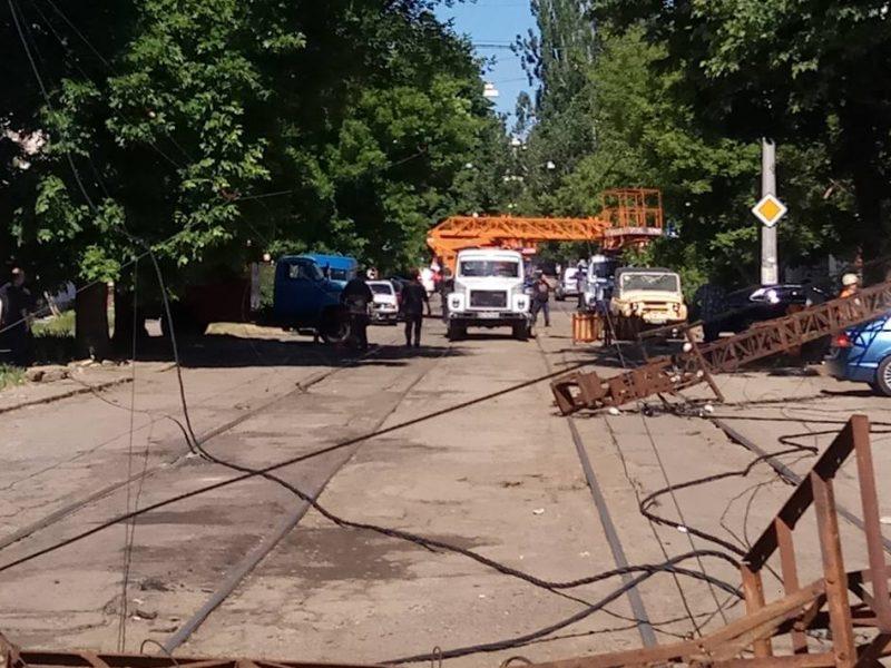 В Николаеве упавшее дерево завалило 5 опор трамвайной сети – трамваи по Потемкинской ходить не будут