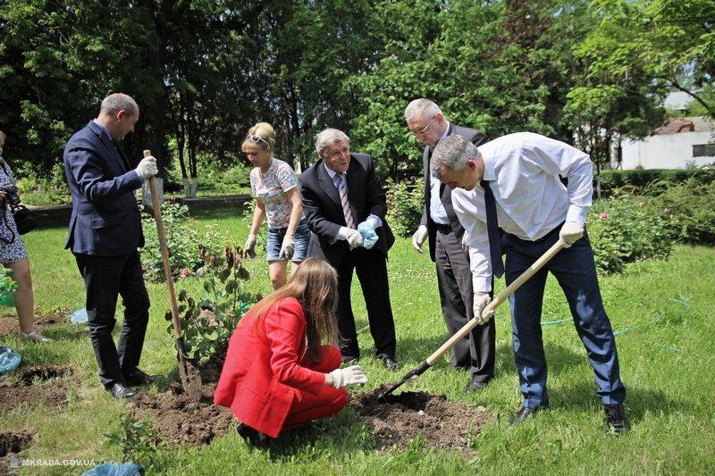 Для вас, аллергики: в Николаеве объявлен тендер на закупку 3,5 тысяч саженцев деревьев и кустов: платаны и тополя в наборе
