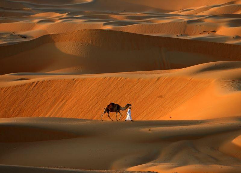 Самый большой оазис в мире внесли в список объектов всемирного наследия ЮНЕСКО