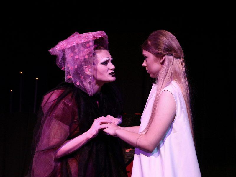 Николаевский русдрам представил премьеру «Урок вдовам» по пьесе Жана Кокто