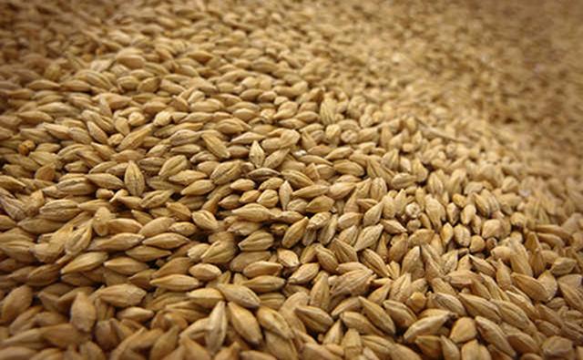 СМИ: На николаевском терминале в зерно при погрузке на судно добавляют песок