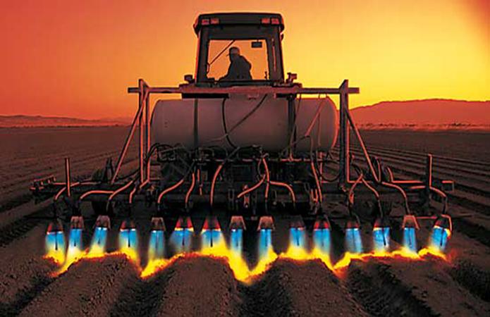 Жизнь без пестицидов. Сорняки будут убивать электротоком — уже получается