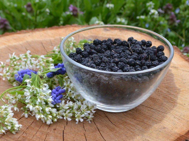 Запах какао, вкус – ореховый. В Николаевской области производят уникальный продукт – черемуховую муку