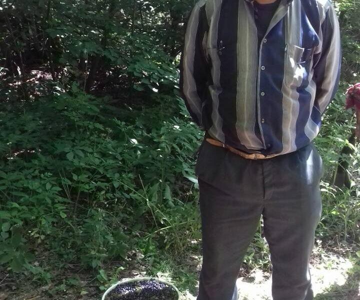 В Чернобыльской зоне задержали мужчину с 12 кг радиоактивной черники