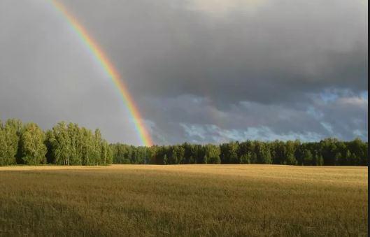 Николаевский гидрометеоцентр обещает жару, дожди и грозы до конца недели