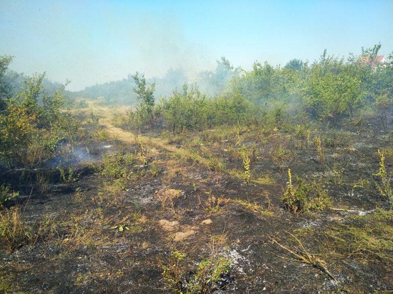 Восемь пожаров за сутки на открытых территориях пришлось тушить спасателям Николаевщины
