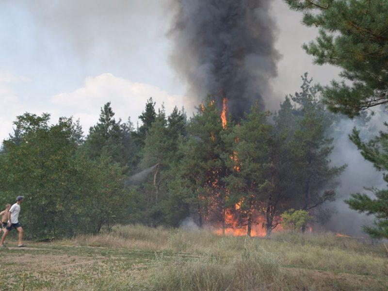 Спасатели уверены: продолжающиеся неделю пожары в Вознесенском районе – результат поджогов