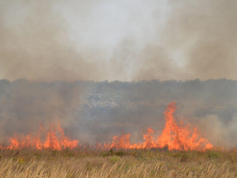 На Николаевщине за прошедшие сутки спасатели 2 раза тушили пожары на открытых территориях