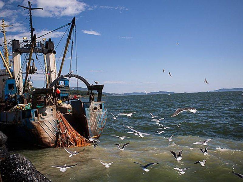 Украинский омбудсмен обратилась в ООН по поводу плененных россиянами очаковских рыбаков с судна «ЯМК-0041»