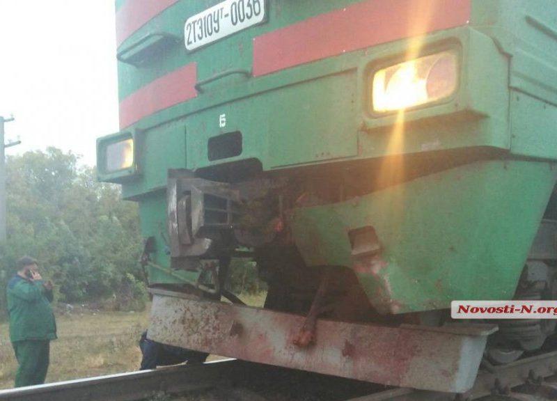 На Николаевщине скорый поезд «Херсон-Харьков» сбил корову и остановился