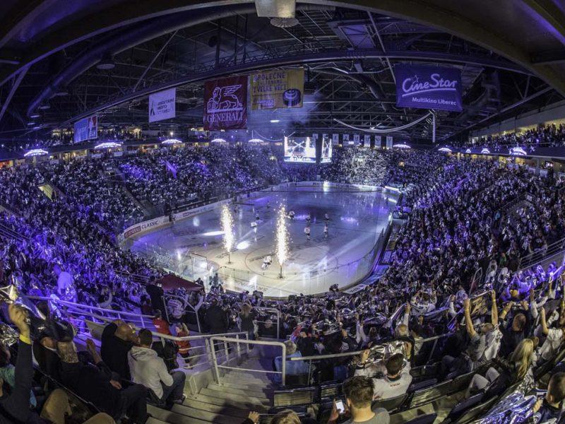 Сенкевич и Казакова съездили в Чехию – изучить, как работают современные спортивно-развлекательные комплексы