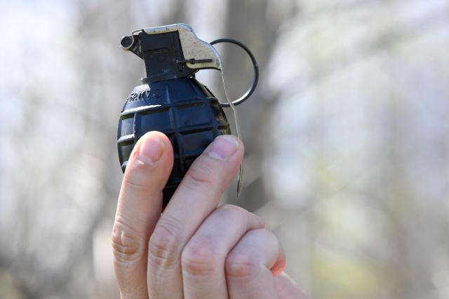 Впервые в истории Швеции гражданам предложили добровольно сдать гранаты