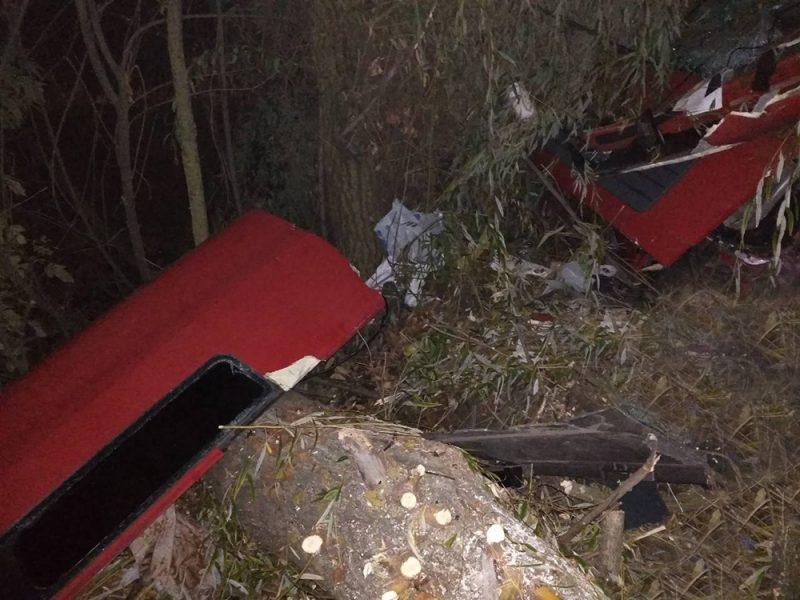 На трассе Н-11 «Днепр-Николаев» фура слетела в кювет – водитель погиб