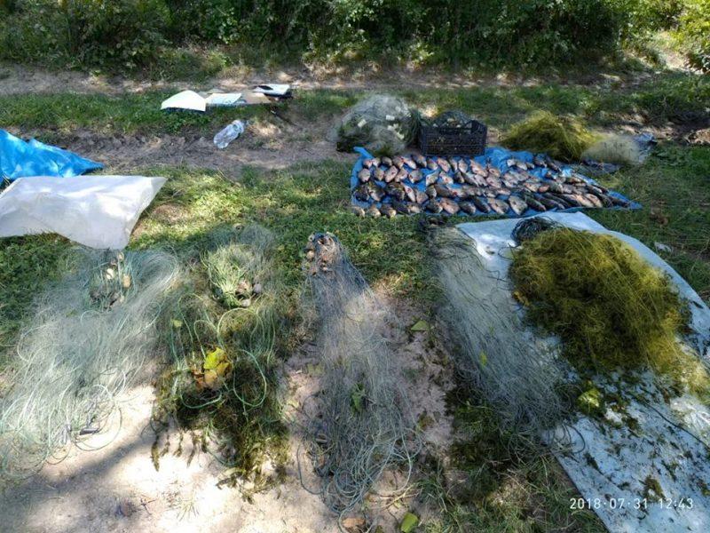 За минувшую неделю Николаевский рыбоохранный патруль изъял у браконьеров 153 кг незаконно добытых водных биоресурсов
