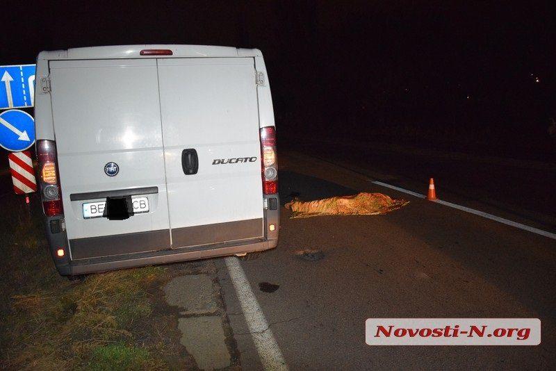 На въезде в Николаев водитель «Фиата» насмерть сбил пешехода, перебегавшего дорогу