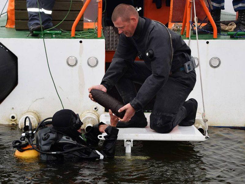 Пиротехники уничтожили 192 взрывоопасных предмета, найденных возле острова Березань