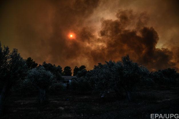 В Греции начался масштабный лесной пожар