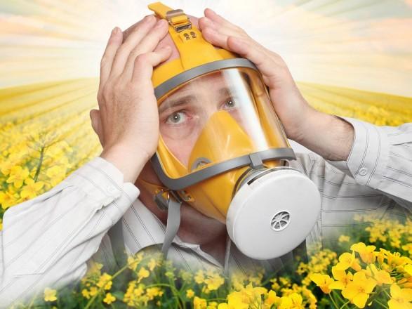 Затянувшееся бабье лето – время смены аллергенов. Как вы относитесь к альтернарии?