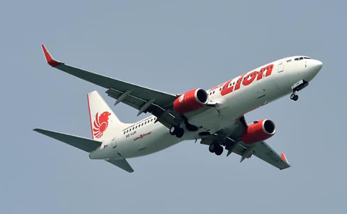 В Индонезии упал в море пассажирский самолет, на борту было 189 человек