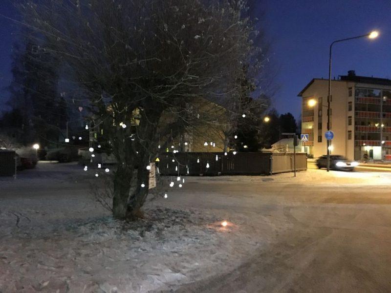 «Всем выйти из сумрака!»: в Финляндии начали появляться деревья с отражателями