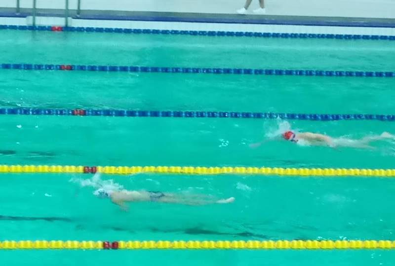 Николаевские пловцы завоевали награды на открытом чемпионате Киева