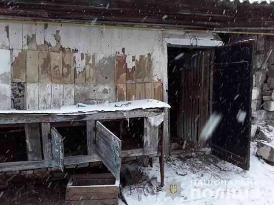 Под Киевом живодеры прикидывались волонтерами и убивали животных