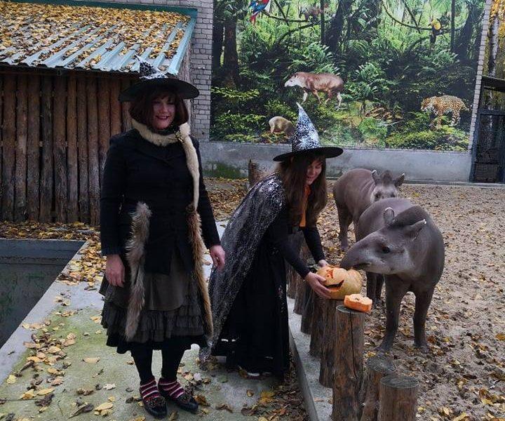Ведьмы-экскурсоводы, страшные животные и веселый шабаш – как в Николаевском зоопарке отметили Хэллоуин