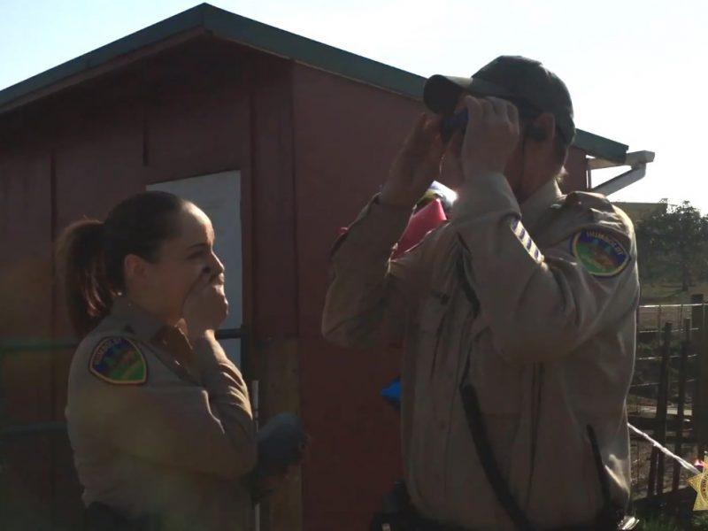 Коллеги подарили шерифу с дальтонизмом специальные очки. Он увидел настоящие цвета первый раз в жизни
