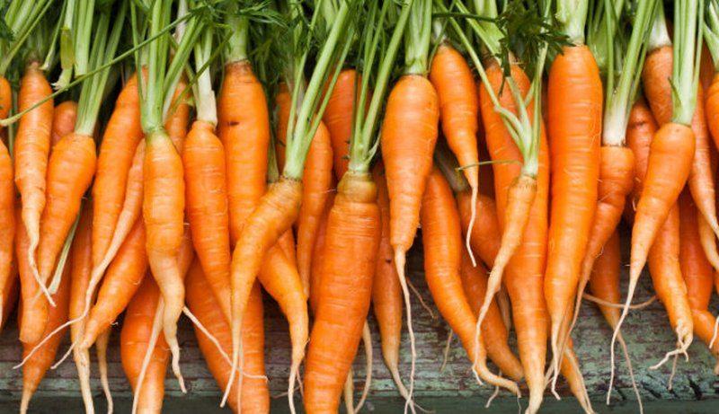 Из кухни Кривоозерской ЦРБ изъяли партию морковки – в ней было много нитратов