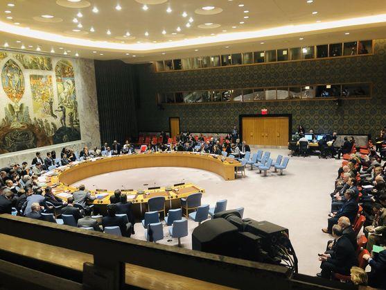 Совбез ООН заблокировал инициативу России о «нарушении границ» кораблями ВМС Украины