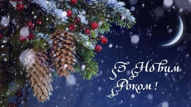 Сенкевич, Москаленко, Жолобецкий и Козырь – кто уже поздравляет николаевцев с Новым годом
