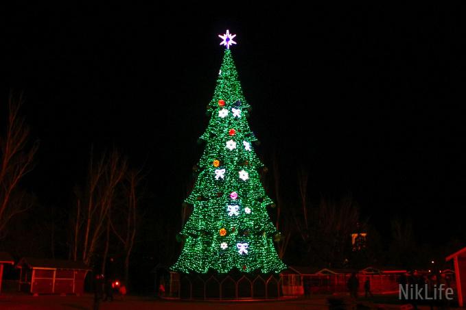 На Соборной площади установили главную в Николаеве новогоднюю елку