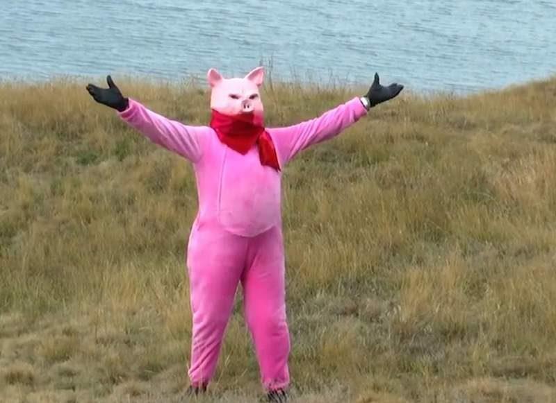 Новый год – новый образ. Директор Одесского зоопарка снялся в клипе в образе свиньи