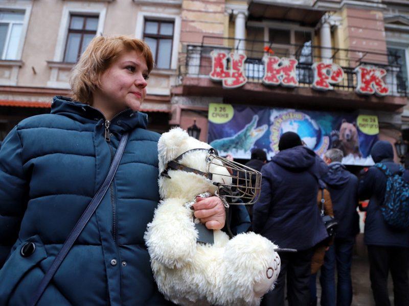 Киевский суд запретил в столице передвижные цирки-шапито с животными