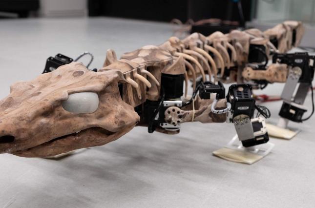 """Ученые """"оживили"""" скелет ящера возрастом 290 миллионов лет"""