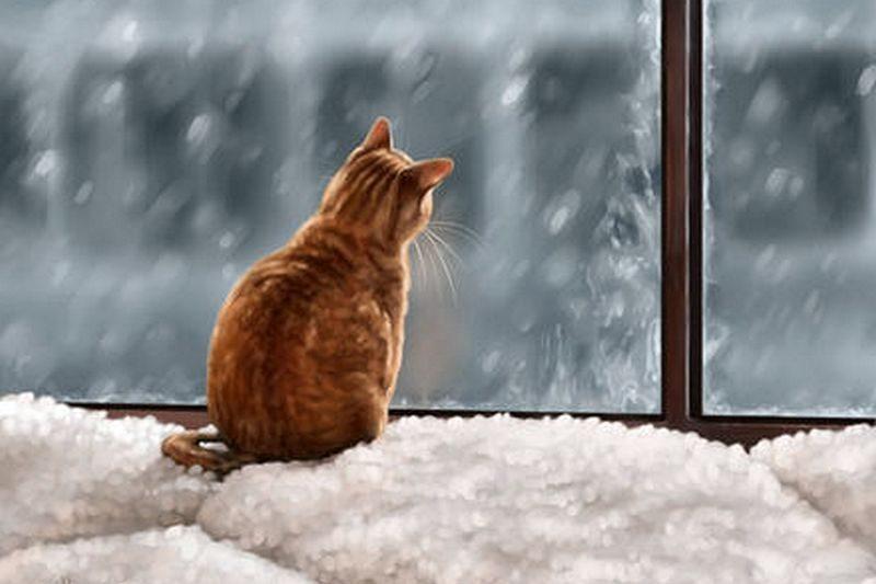 Украинцев предупреждают о резком понижении температуры, снегопадах, гололеде и метелях