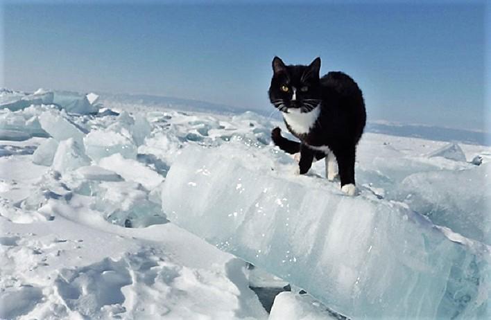 Синоптики рассказали, когда ослабеют морозы