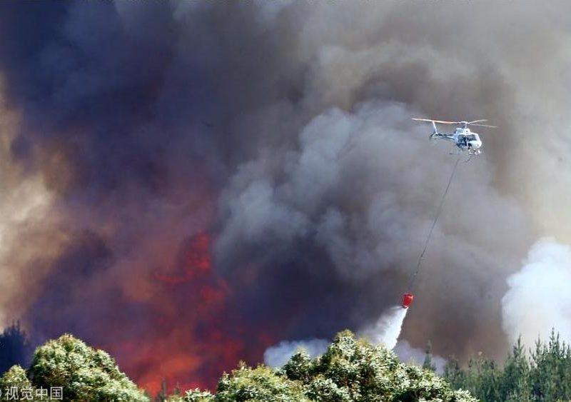 Таких лесных пожаров в Новой Зеландии не видели уже 60 лет – несколько тысяч людей эвакуированы