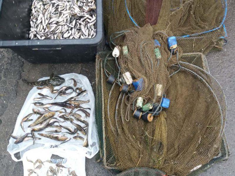 Николаевский рыбоохранный патруль с пограничниками задержал браконьера на незаконном лове трехиглой колюшки