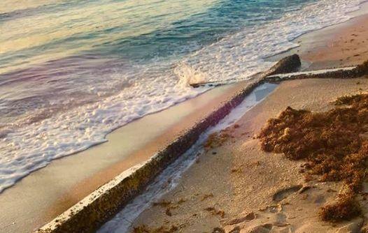 Это знак! На пляже Флориды обнаружили 6-метровый деревянный крест
